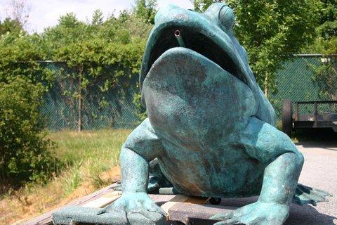 Bronze Giant American Bullfrog