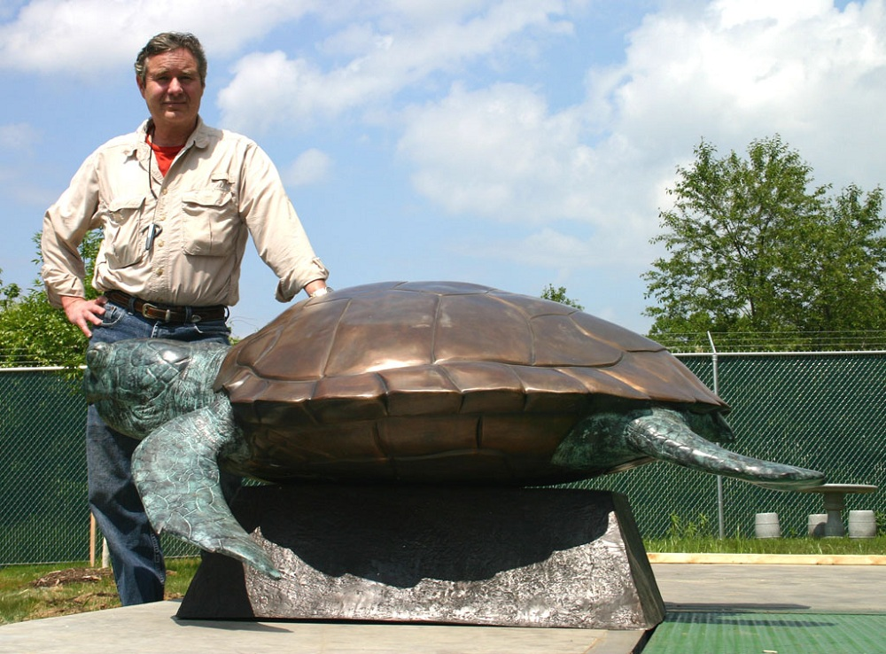 Bronze Loggerhead Turtle on Base
