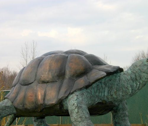 Bronze Standing Tortoise Turtle Fountain