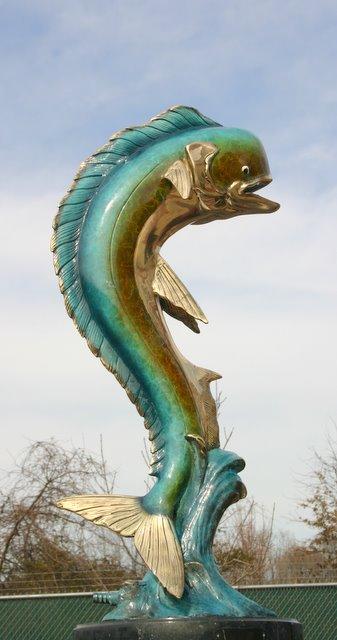 Bronze Dorado Fish or Mahi Mahi Dolphin