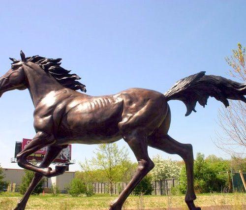 Wild Horse Running Galloping