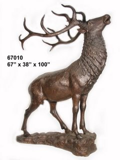 Baying Elk On Rock