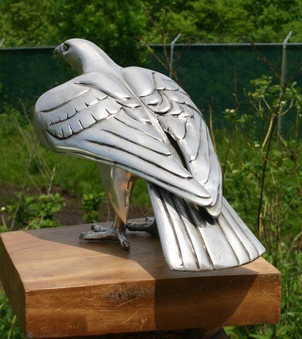 Silver Imperial Eagle Hawk