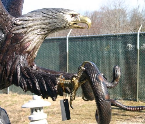 Flying Eagle Catching Rattle Snake
