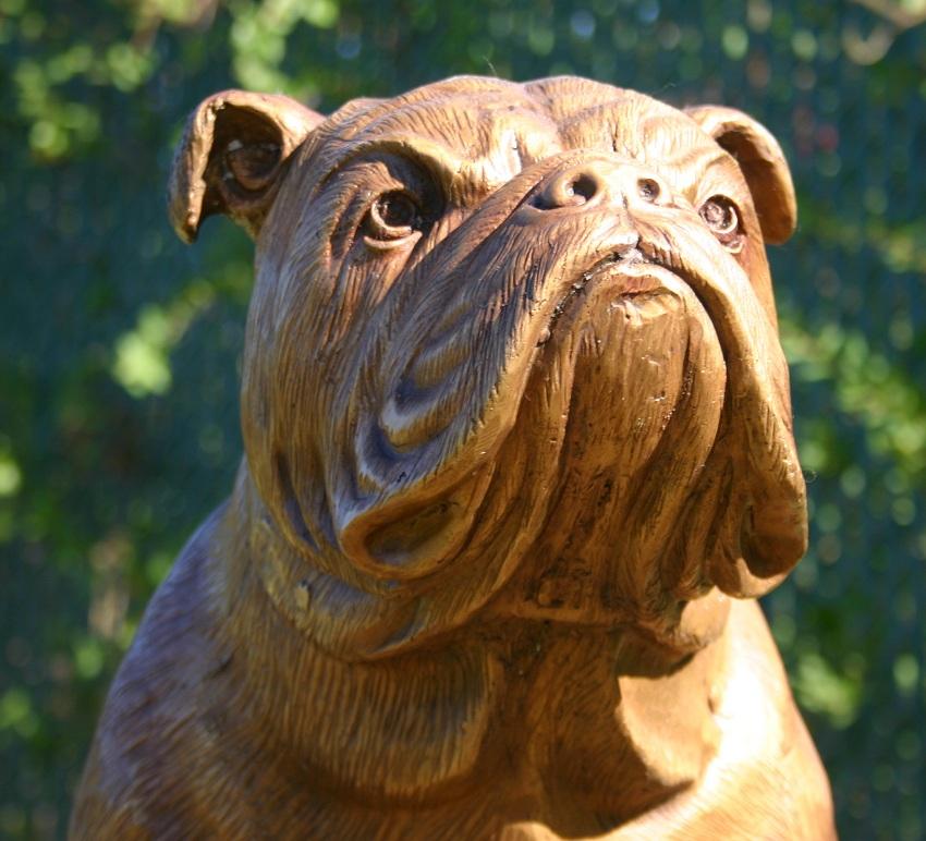 Amazon.com: bulldog statues