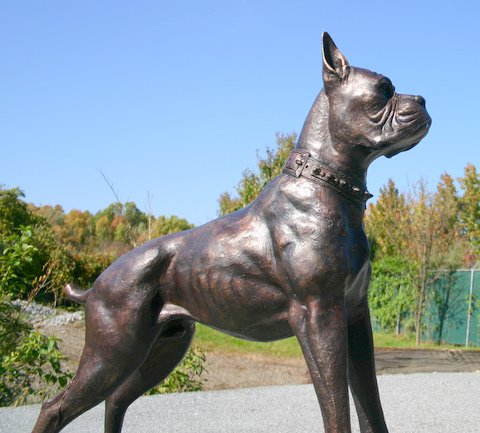 Boxer Dog Standing AKC CKC Breed Sculpture