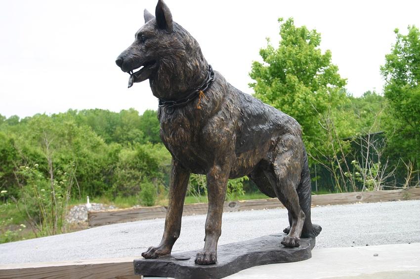 German Shepherd on Base