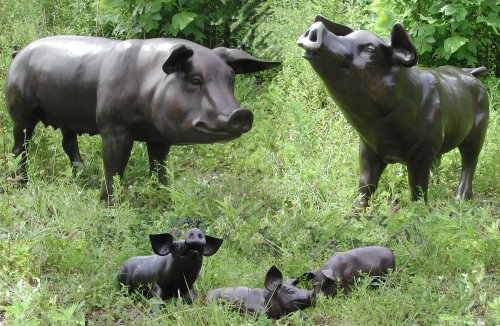 Pig Family of Five