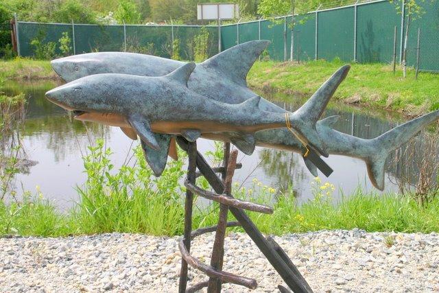 Two Shark Fountain
